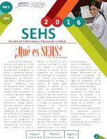 ¿Que es SEHS?